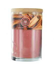 CINNAMON STICK by Terra Essential Scents