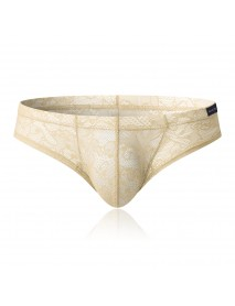 Hollow Lace Translucent Nylon U Convex Pouch Briefs Underwear for Men