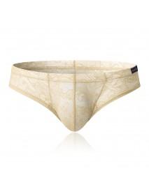 Hollow Lace Translucent Nylon U Convex Pouch Briefs Underwear for Men