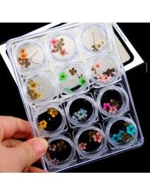 12 Color Truth Flower Nail Art Decoration 3D Dry Dried Flowers Stickers DIY Manicure Tools