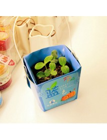 Creative Mini Gift Box Shape Potted Office Hydroponic Plant Desktop
