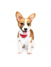 Pet Dog Cotton Personalized Collar Summer Winter Pet Bids Puppy Watermelon Collar