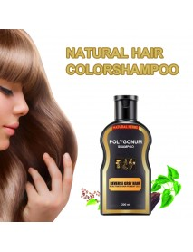 1 Pcs 200ml Grey Reverse Hair Color Polygonum Multiflorum Ginger Hair Care Hair Darkening Cleansing Shampoo