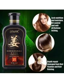 200ml Natural Ginger Shampoo Oil-Control Anti Dandruff Anti Hair Loss Hair Growth Essence